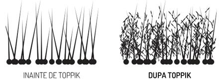 Firele de par inainte/dupa aplicarea nanofibrelor Toppik!